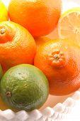 High Key On Lemon Lime And Mineola Tangelo