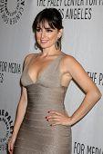 LOS ANGELES - MARCH 10: Ana de la Reguera arrives at the