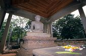foto of samadhi  - Bouddha Samadhi Statue Anuradhapura Sri Lanka asia - JPG