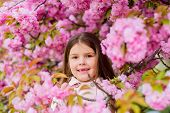 Allergy Remedy. Child Enjoy Life Without Allergy. Sniffing Flowers. Get Rid Of Seasonal Allergy. Gir poster
