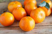 fresh tangerines