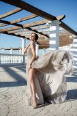 Beautiful Woman In Elegant Evening Dress. Brunette Girl With Long Healthy And Shiny  Hair. Beautiful poster