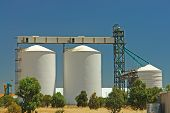 Wheat Silos