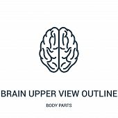 Brain Upper View Outline Icon Isolated On White Background From Body Parts Collection. Brain Upper V poster