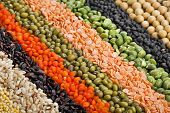 colorful  striped rows of dry lentils, soya beans,  grain ,peas, groats , buckwheat, soybeans, legumes, rice, backdrop