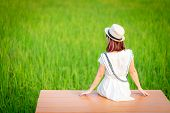Relaxing Young Woman Sitting In Nature On The Wood, Looking At The Green Fields, Refreshing Nature,  poster