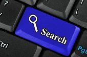Blue Search Icon Button