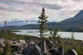 Scenery With Glacier Lake And Vegetation Along The Klondike Highway In Canada.
