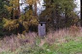 The Wooden Toilet in the Woods