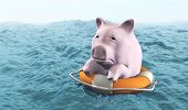 Pink Piggy On Life Preserver