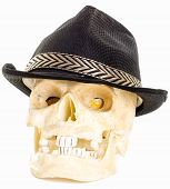 Skull wearing black jazz hat