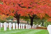 Arlington National Cemetery in de buurt van Washington DC, in de herfst