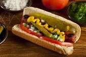 picture of wiener dog  - Chicago Style Hot Dog with Mustard Pickle Tomato Relish and Onion - JPG