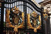 Buckingham palace gate, London