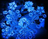 Blue Borage And Cornflower Flowers. Closeup Stylized Monochrome Photo Background
