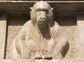 Monkey Stein