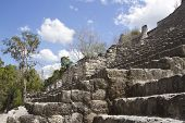 Mayan Ruins At Calakmul, Mexico
