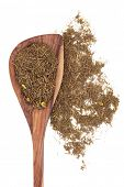 Goldenseal root herb used in herbal medicine in a wooden spoon over white background. Hydrastis cana