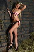 Woman in bikini on hay at wall