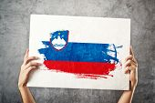 Man Holding Banner With Slovenian Flag.
