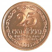 stock photo of sinhala  - 25 Sri Lankan rupee cents coin isolated on white background - JPG