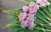 Bouquet  Lotus