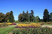 Flowers in Botanical Garden
