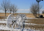 foto of pecan tree  - Sprinkler left on in the winter forms ice sickles  - JPG