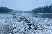 Snow Winter Morning On Lake