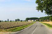 Countryside Near Pavia