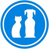 Pet Blue Icon
