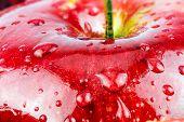 Macro of fresh red wet apple