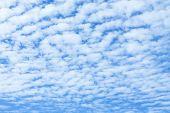 Altocumulus Cloud And Blue Sky