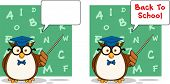Wise Owl Teacher Cartoon Character 4. Collection Set