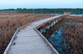Boardwalk And Marsh In Minnesota River Wildlife Refuge