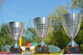 MOSCOW, RUSSIA - JULY 20, 2014: Trophies of the ITF Beach Tennis World Team Championship. Italy beca