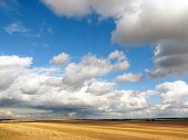 Summer Landscape. Mown Wheat Field And A Beautiful Sky