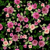 Roses seamless pattern on dark floral background. Raster version.