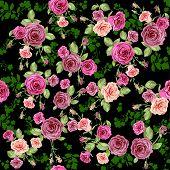 Roses seamless pattern on dark floral background. Raster version.