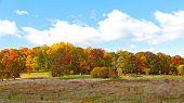 Bright fall foliage in US Capital.