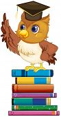 Illustration of an owl standing on a stack of books