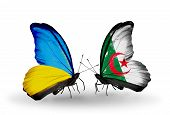 Two Butterflies With Flags On Wings As Symbol Of Relations Ukraine And Algeria