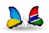 Two Butterflies With Flags On Wings As Symbol Of Relations Ukraine And Gambia
