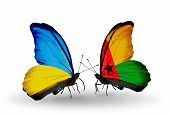 Two Butterflies With Flags On Wings As Symbol Of Relations Ukraine And Guinea Bissau