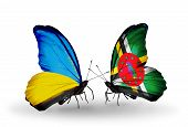 Two Butterflies With Flags On Wings As Symbol Of Relations Ukraine And Dominica