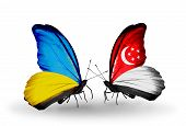 Two Butterflies With Flags On Wings As Symbol Of Relations Ukraine And Singapore