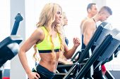 stock photo of treadmill  - Treadmill group - JPG