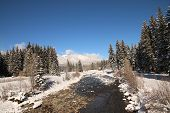 pic of blanket snow  - A snow blanket over Vallecito Creek in Vallecito - JPG