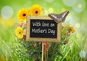 An image of a little chalkboard in the garden with the text With love on Mother's Day