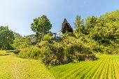 Toraja traditional culture and life